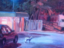 Florida Night landscape oil painting
